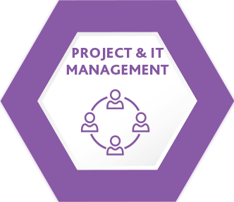 Project & IT management