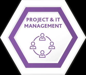 Project & IT management